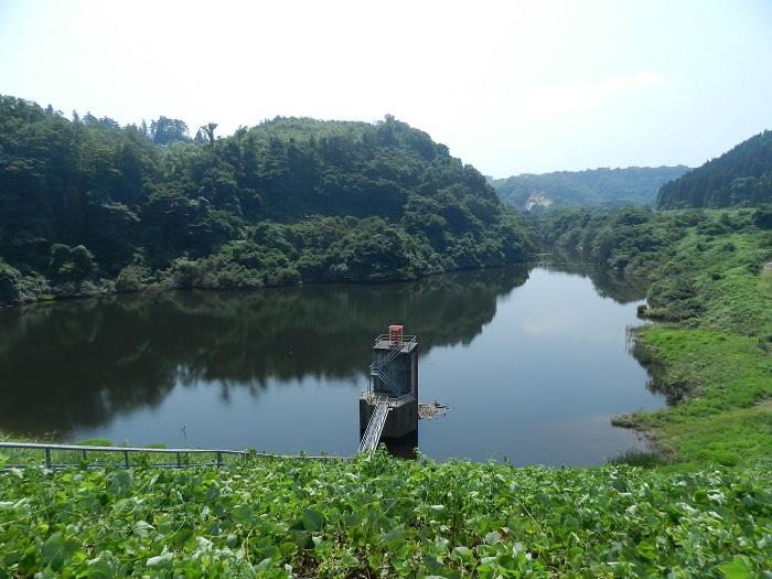 衣川3号09