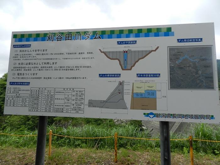 刈谷田川15