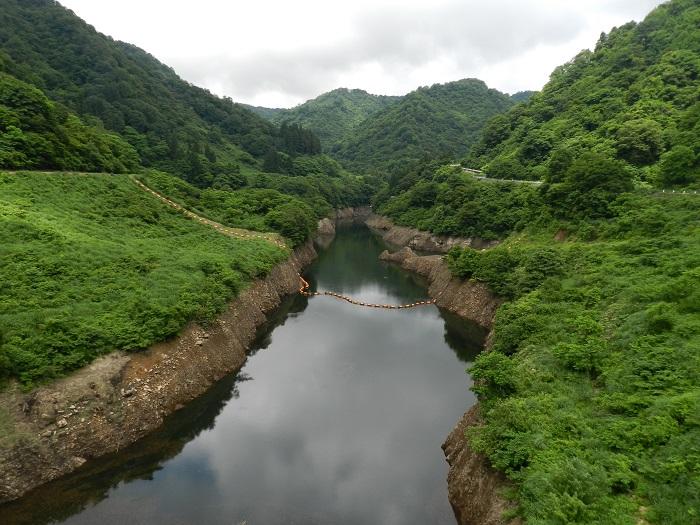 刈谷田川12