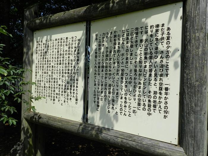 mizugatoro15.jpg