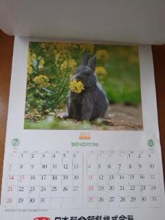 ニッパイカレンダー