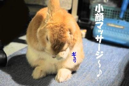 小顔マッサージ4