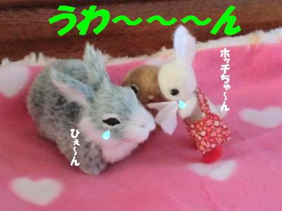 ドナドナド~ナド~ナ3
