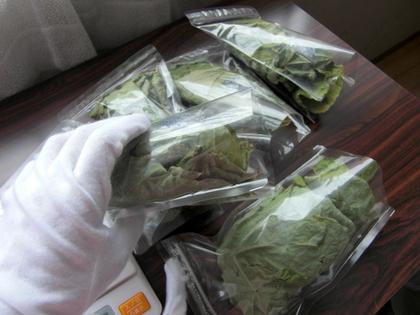 乾燥剤とともに袋に詰めます