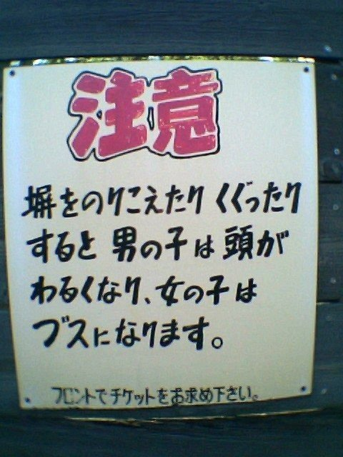 20100808c2.jpg