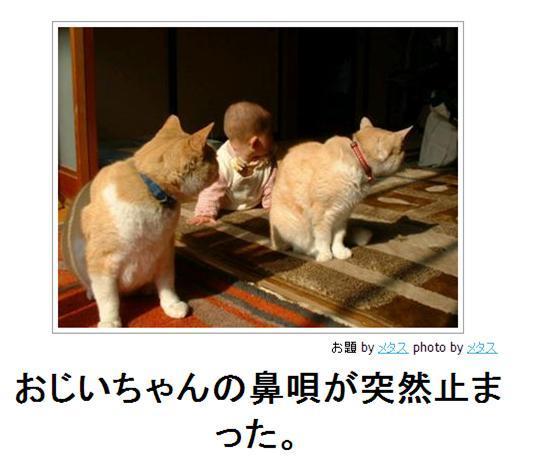 hanauta2.jpg