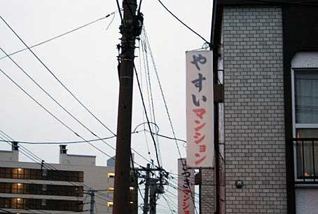 yasuiMS.jpg