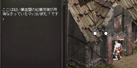 2_20130302015413.jpg