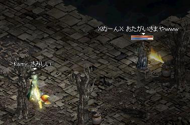 5_20120515011202.jpg