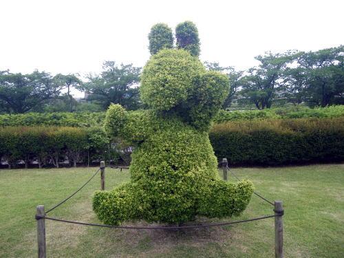 水戸 千波公園の植栽