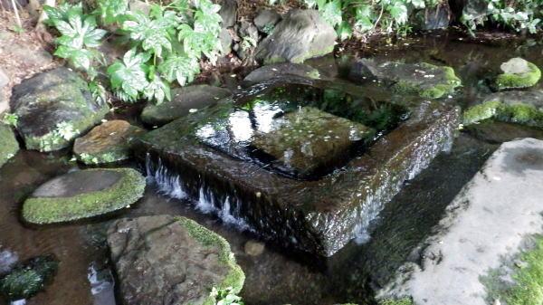 井の頭公園 お茶の水