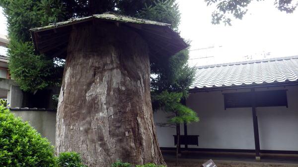100歳の時購入した20年後の彫刻原木
