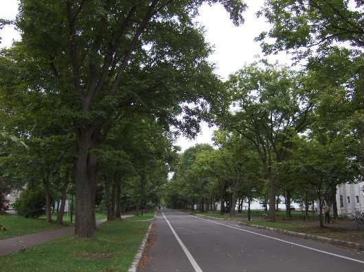 2010_9_22_02.jpg