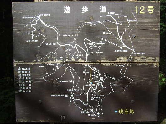2010_9_23_15.jpg
