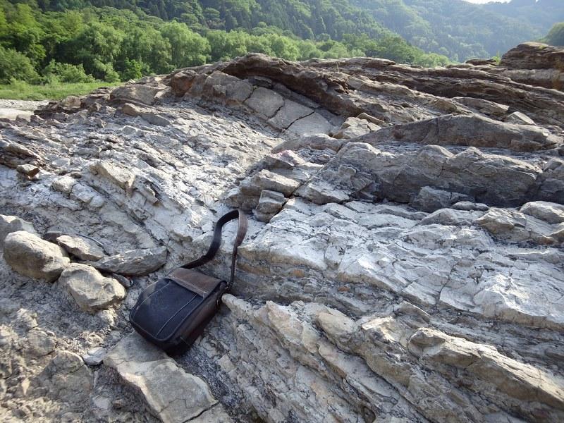 生坂ダム下流の露頭