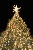 xmas tree hoshino