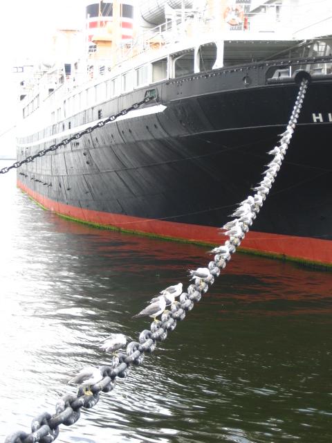 大桟橋 003