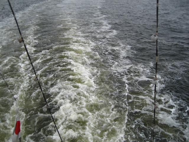 大桟橋 082