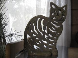 猫2011 035