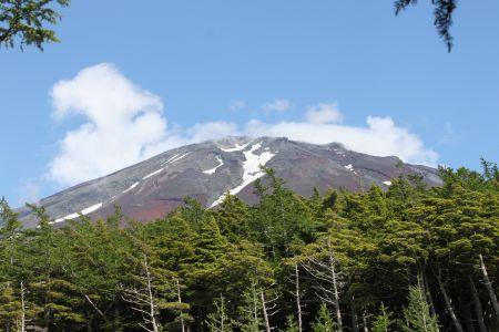 御庭より見る富士