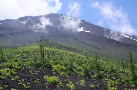 御庭から見た富士山