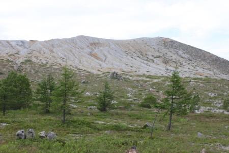 白根火山とカラマツ