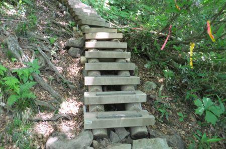 よく整備された登山道