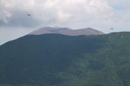 浅間山とアカトンボ