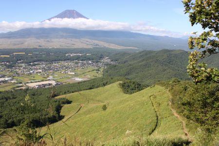 広大な草原と富士山