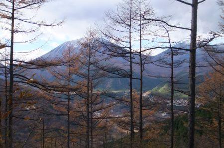 カラマツ林と男体山