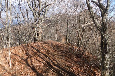鹿留山への稜線