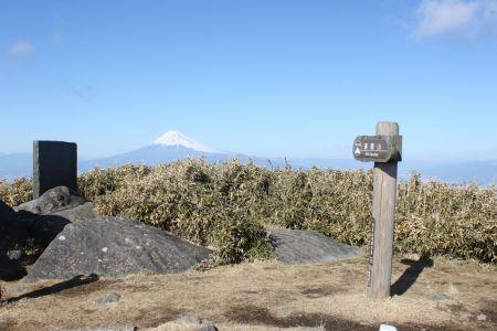 達磨山山頂