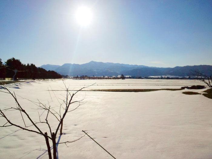 110318_16時08分撮影_会津美里町の水田風景