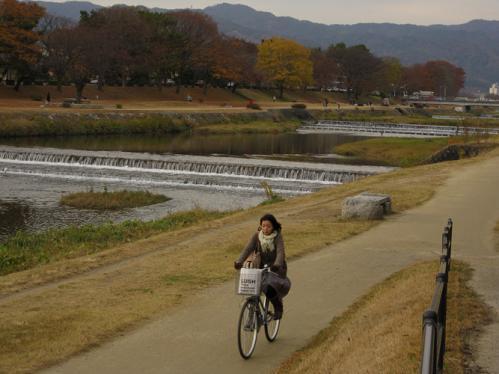 kamogawa_12_11_28.jpg
