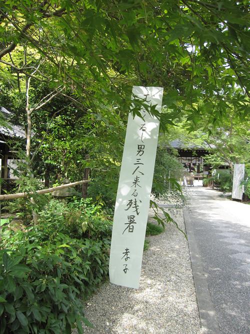 nashinokizinzya_2.jpg
