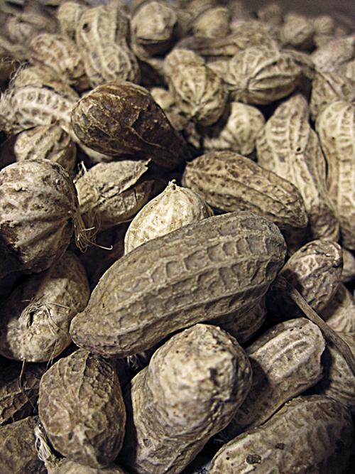 peanuts_2.jpg