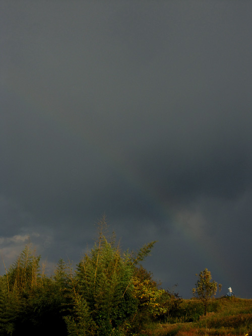 rainbow_12_11_14.jpg