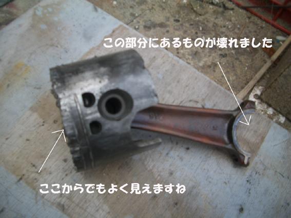 CIMG1596.jpg