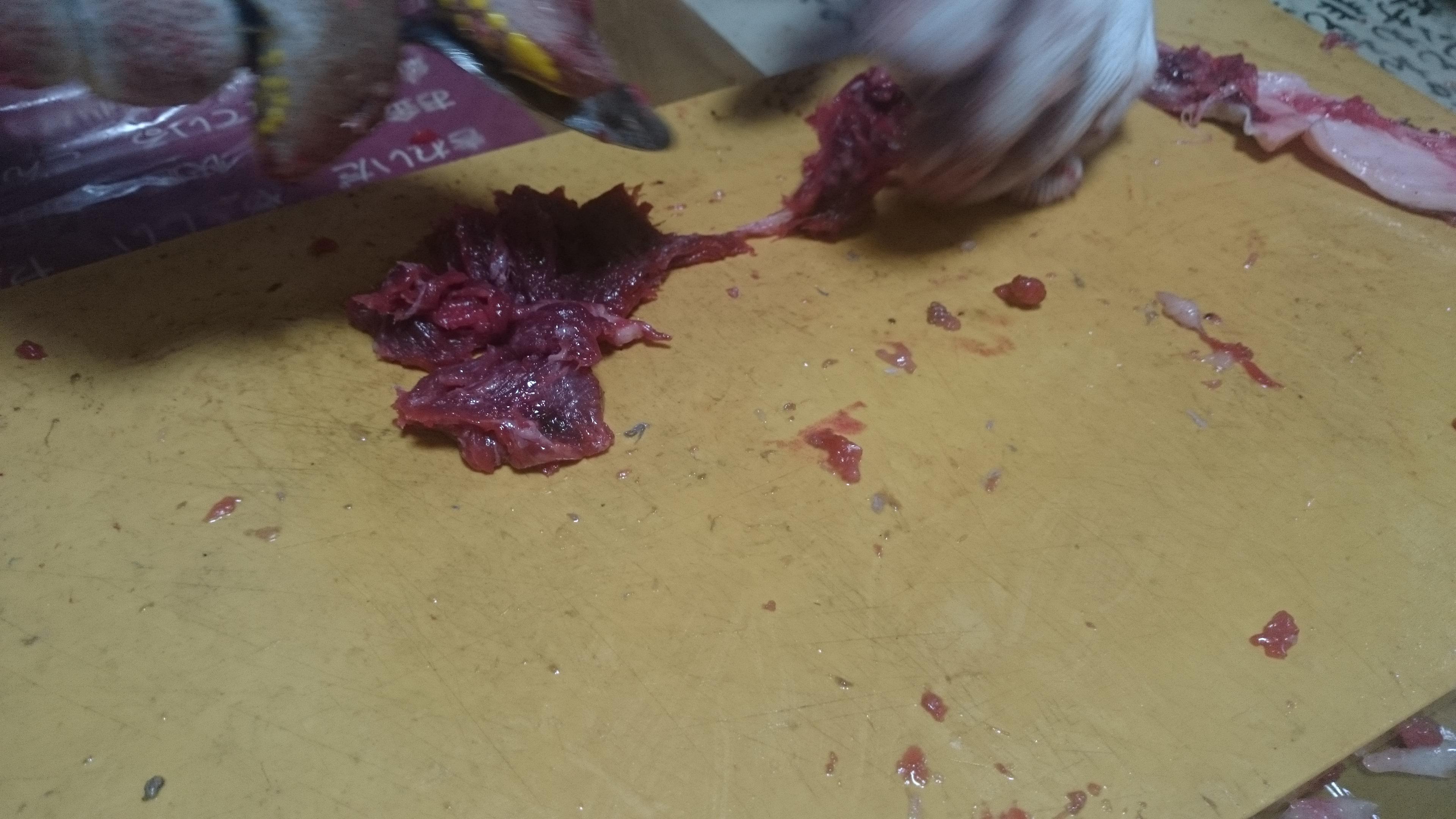 7、マグロ頭の解体