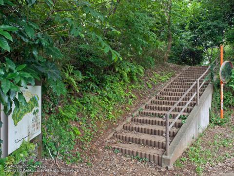 舞岡ふるさとの森の案内地図と階段