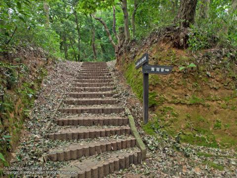 舞岡ふるさとの森の階段