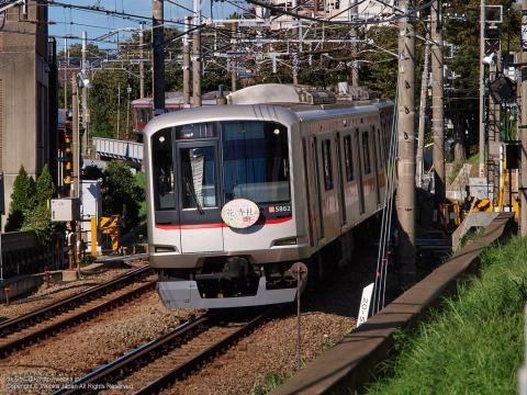 東急5050系電車5862F「花と寺社めぐり」ヘッドマーク付