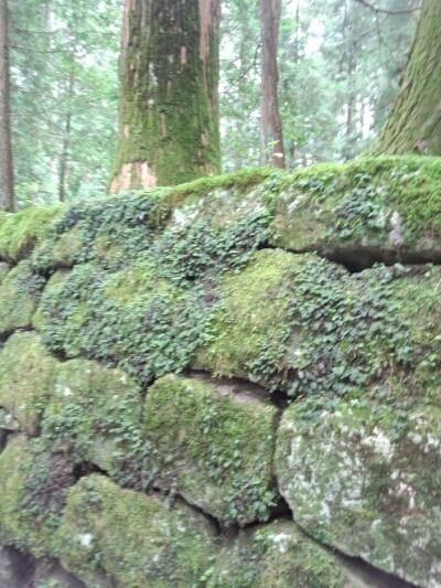 fc2blog_201209081338096f2.jpg