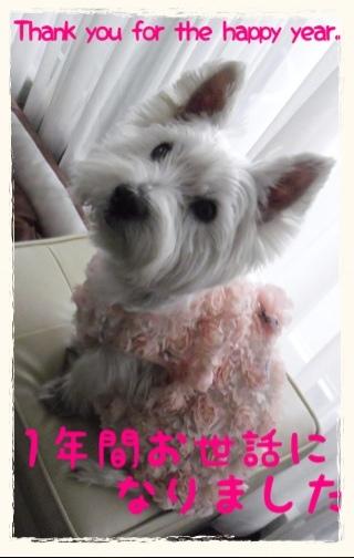 fc2blog_20121228144507ad3.jpg