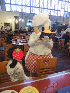 chef mickey7