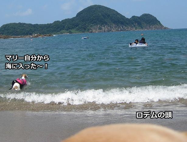 20120722-26-3.jpg