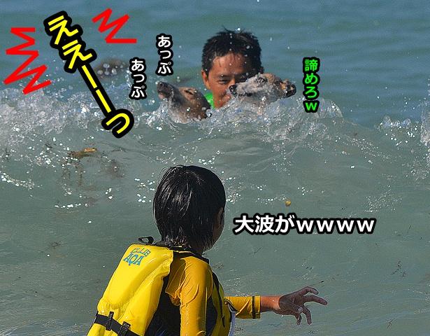 20120803-22.jpg