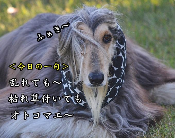 20121025-22.jpg