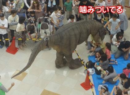 0914-rex1.jpg