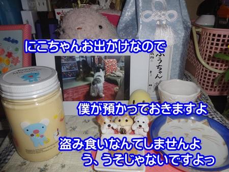 0921-03_20140921110527cf6.jpg